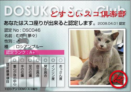 SCO46_2.jpg